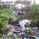 Denúncia: Moradores reclamam que carro do lixo não faz coleta em vila de Vassouras – Taperuaba