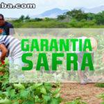 Garantia-Safra: agricultores familiares de seis municípios cearenses receberão o recurso a partir deste mês